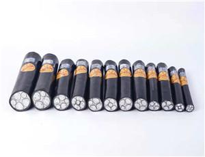 1KV铜芯钢丝铠装电力电缆